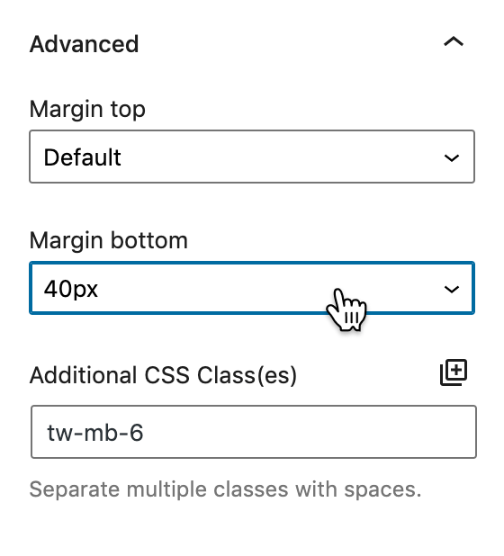 Screenshot of the Advanced panel featuring the margin settings.